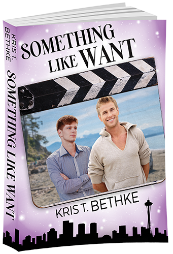 somethinglikewant_3dcoverlg